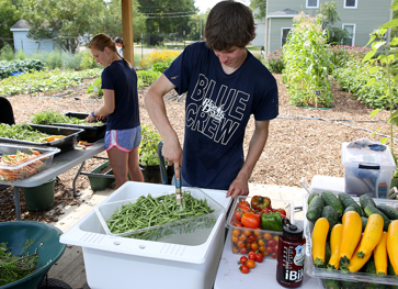 Photo of students working at UW Sprout garden