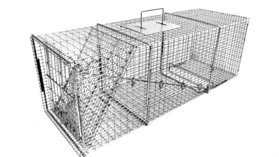 Tomahawk Live Trap (TLT) offers more than 100 sizes of traps and cages to humanely capture pests and stray animals.